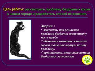 Цель работы: рассмотреть проблему бездомных кошек в нашем городе и разработат
