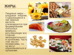 Пищевые жиры – кладовая энергии. Содержащиеся в них жирные кислоты утилизирую