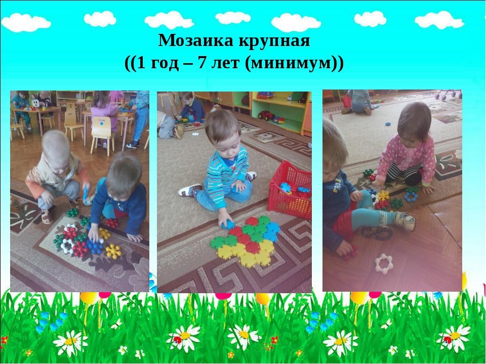 Мозаика крупная ((1 год – 7 лет (минимум))
