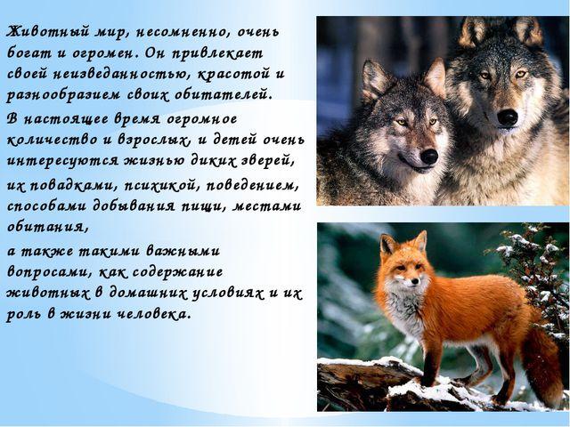 Животный мир, несомненно, очень богат и огромен. Он привлекает своей неизведа...