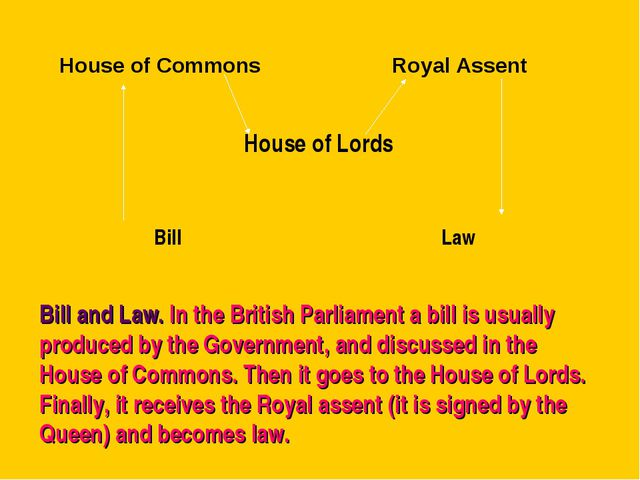 Bill and Law. In the British Parliament a bill is usually produced by the Gov...