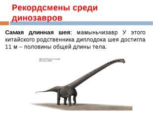 Рекордсмены среди динозавров Самая длинная шея: мамыньчизавр У этого китайско