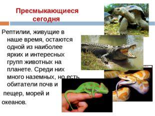 Пресмыкающиеся сегодня Рептилии, живущие в наше время, остаются одной из наиб