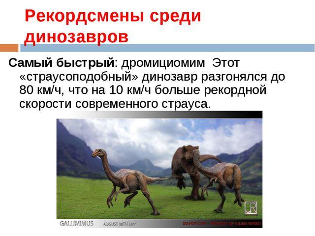 Рекордсмены среди динозавров Самый быстрый: дромициомим Этот «страусоподобный...