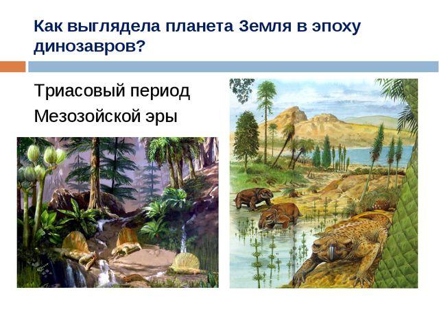 Как выглядела планета Земля в эпоху динозавров? Триасовый период Мезозойской...
