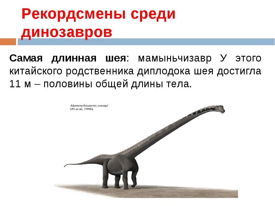 Рекордсмены среди динозавров Самая длинная шея: мамыньчизавр У этого китайско...