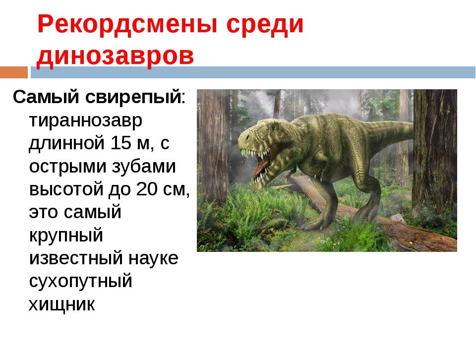 Рекордсмены среди динозавров Самый свирепый: тираннозавр длинной 15 м, с остр...
