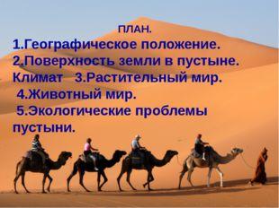 ПЛАН. 1.Географическое положение. 2.Поверхность земли в пустыне. Климат 3.Ра