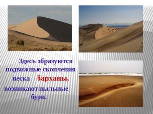 Здесь образуются подвижные скопления песка - барханы, возникают пыльные бури.