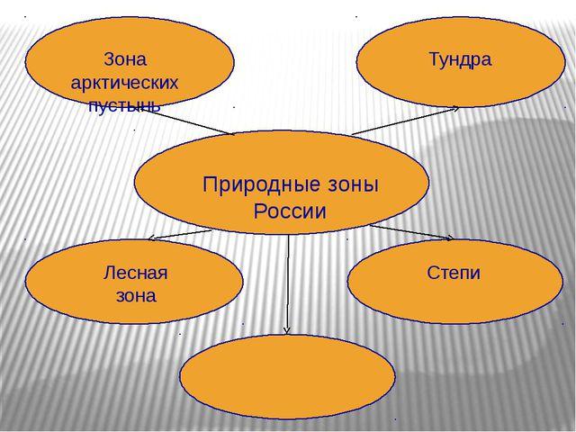 ? Природные зоны России Зона арктических пустынь Тундра Лесная зона Степи