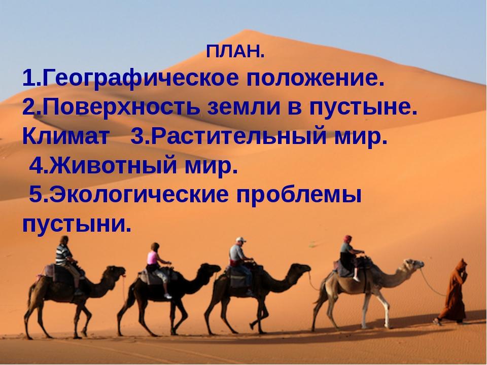 ПЛАН. 1.Географическое положение. 2.Поверхность земли в пустыне. Климат 3.Ра...