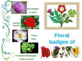 Floral badges of the UK Северная Ирландия Northern Ireland Шотландия Scotland