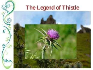 The Legend of Thistle Legend has it that an Army of King of Norway, intent o