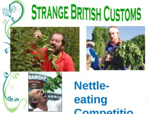 Nettle-eating Competition There's a nettle-eating contest in Britain every ye