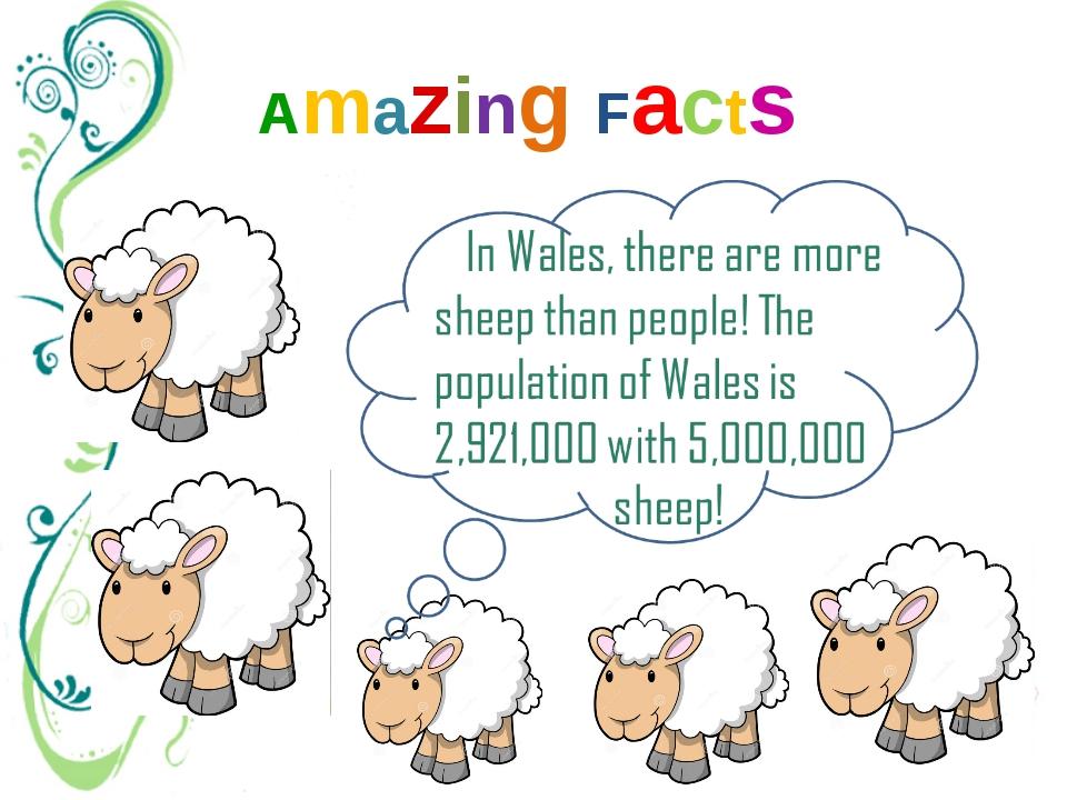 Amazing Facts approximately