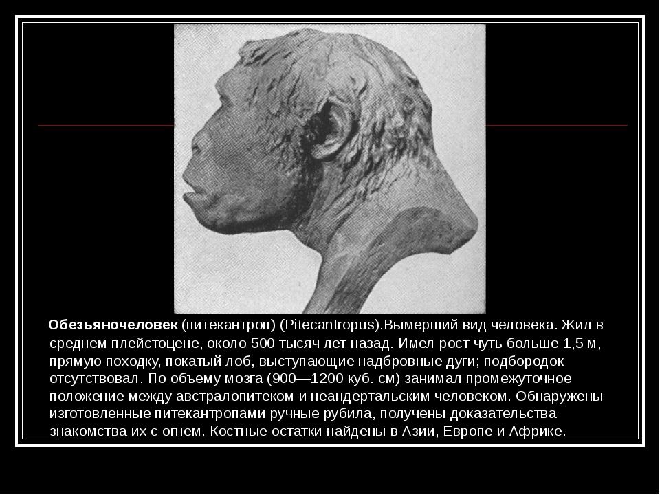 Обезьяночеловек (питекантроп) (Pitecantropus).Вымерший вид человека. Жил в с...