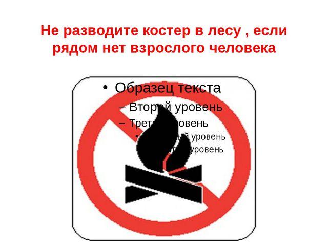 Не разводите костер в лесу , если рядом нет взрослого человека