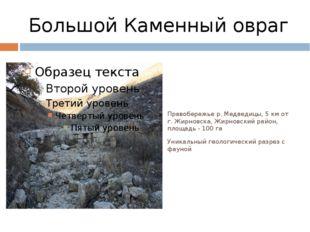 Большой Каменный овраг Правобережье р. Медведицы, 5 км от г. Жирновска, Жирно