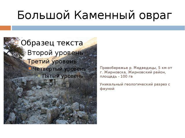 Большой Каменный овраг Правобережье р. Медведицы, 5 км от г. Жирновска, Жирно...