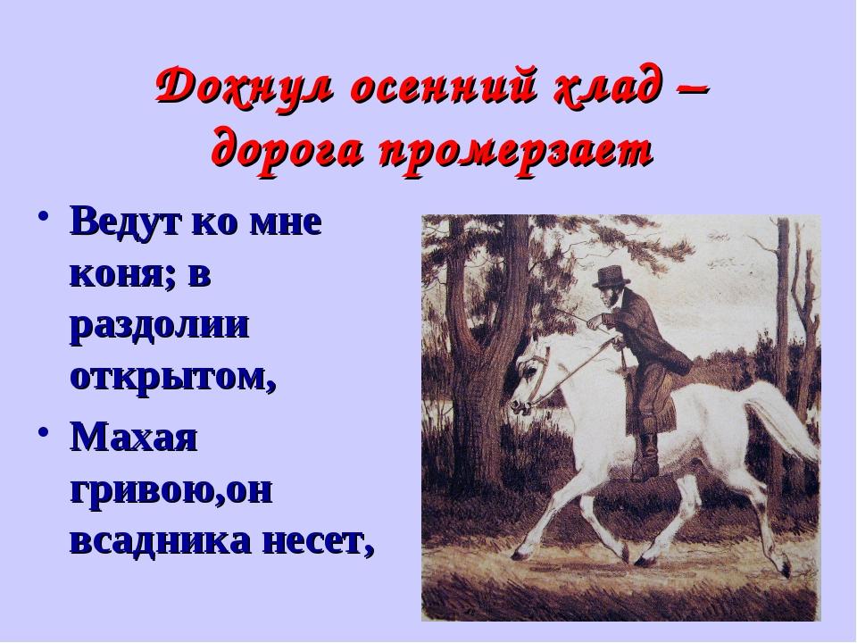 Дохнул осенний хлад – дорога промерзает Ведут ко мне коня; в раздолии открыто...