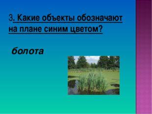 3. Какие объекты обозначают на плане синим цветом? болота