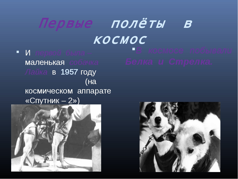 Первые полёты в космос В космосе побывали Белка и Стрелка. И первой была – ма...