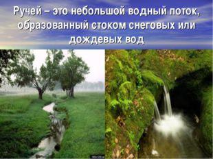 Ручей – это небольшой водный поток, образованный стоком снеговых или дождевых