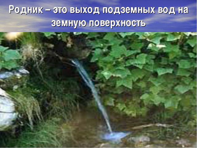 Родник – это выход подземных вод на земную поверхность