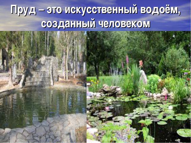 Пруд – это искусственный водоём, созданный человеком