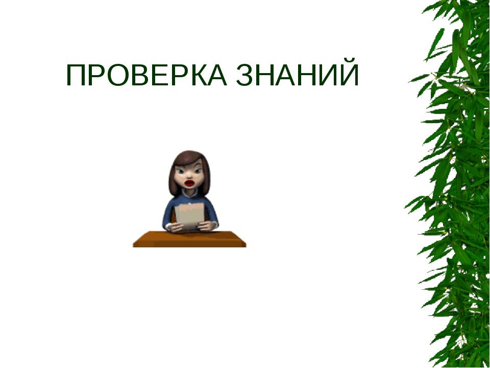 ПРОВЕРКА ЗНАНИЙ