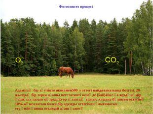О2 СО2 Фотосинтез процесі Адамның бір тәулікте шамамен500 л оттегі пайдаланат