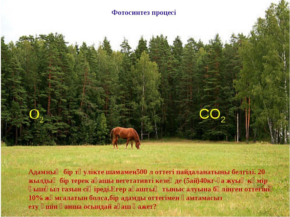 О2 СО2 Фотосинтез процесі Адамның бір тәулікте шамамен500 л оттегі пайдаланат...