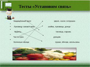 Тесты «Установим связь» Защищённый грунт укроп, салат, петрушка Луковицу сажа