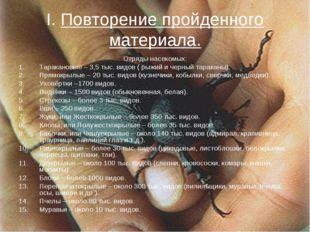 I. Повторение пройденного материала. Отряды насекомых: Таракановые – 3,5 тыс.