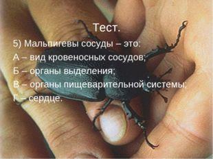 5) Мальпигевы сосуды – это: А – вид кровеносных сосудов; Б – органы выделения