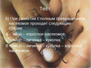 6) При развитии с полным превращением насекомое проходит следующие стадии: А