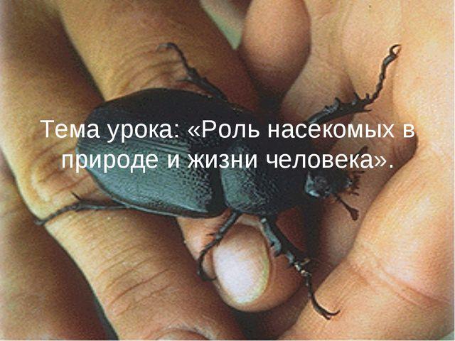 Тема урока: «Роль насекомых в природе и жизни человека».