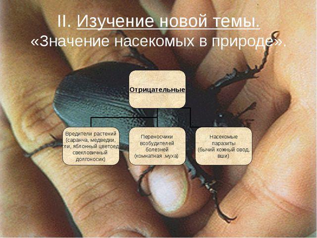 II. Изучение новой темы. «Значение насекомых в природе».