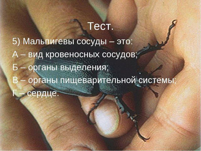 5) Мальпигевы сосуды – это: А – вид кровеносных сосудов; Б – органы выделения...