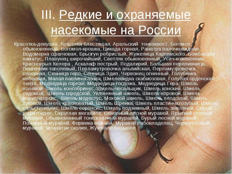 III. Редкие и охраняемые насекомые на России Красотка-девушка, Красотка блест...