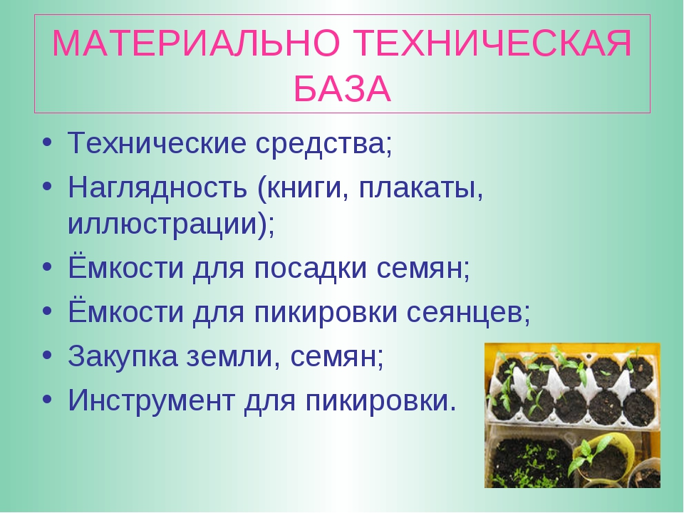МАТЕРИАЛЬНО ТЕХНИЧЕСКАЯ БАЗА Технические средства; Наглядность (книги, плакат...