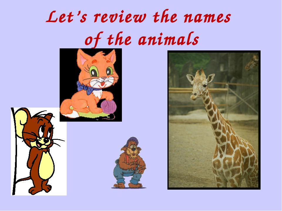 Let's review the names of the animals