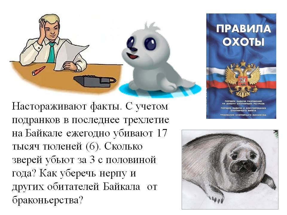 C:\Documents and Settings\Admin\Рабочий стол\Экозадачи н 6. Microsoft Office PowerPoint (3).jpg