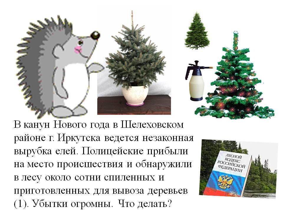 C:\Documents and Settings\Admin\Рабочий стол\Экозадачи н1 Microsoft Office PowerPoint (3).jpg
