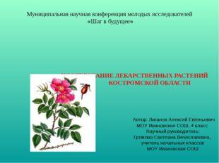 ИССЛЕДОВАНИЕ ЛЕКАРСТВЕННЫХ РАСТЕНИЙ КОСТРОМСКОЙ ОБЛАСТИ Автор: Лиганов Алекс