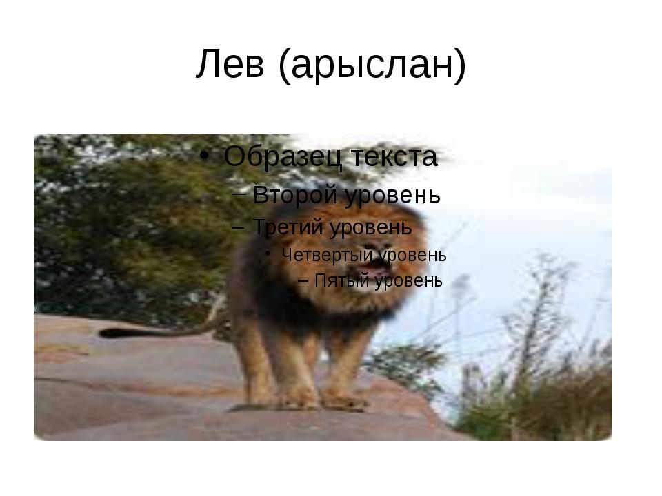 Лев (арыслан)