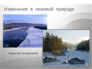 Изменения в неживой природе Ледостав на водоёмах