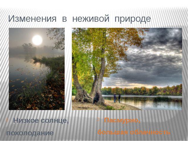 Изменения в неживой природе Низкое солнце, похолодание Пасмурно, большая обла...