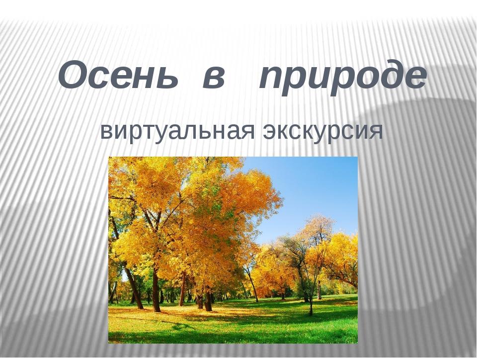 Осень в природе виртуальная экскурсия
