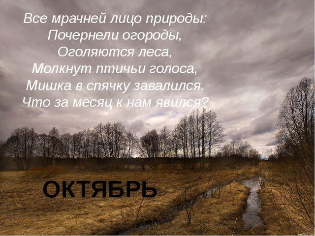Все мрачней лицо природы: Почернели огороды, Оголяются леса, Молкнут птичьи г...